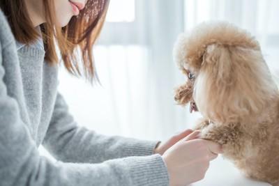 犬の足を掴んで見つめる女性