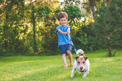 散歩中に犬が男の子を引っ張る