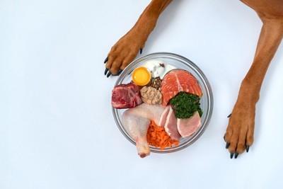 犬の前足と生の食材