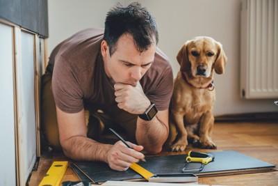 犬小屋を作ろうと考えている男性