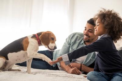 お手をする犬と子供とお父さん