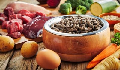 野菜と肉とドッグフード