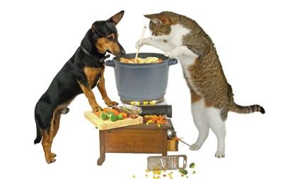 調理する犬と猫