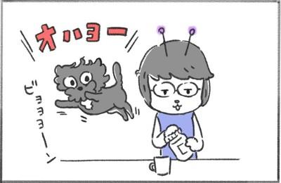 犬と暮らせば1コマ