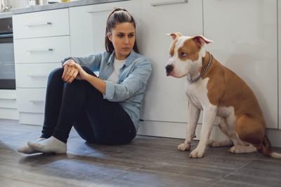 距離感をとって座る女性と犬