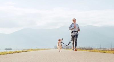 走って散歩している犬と飼い主