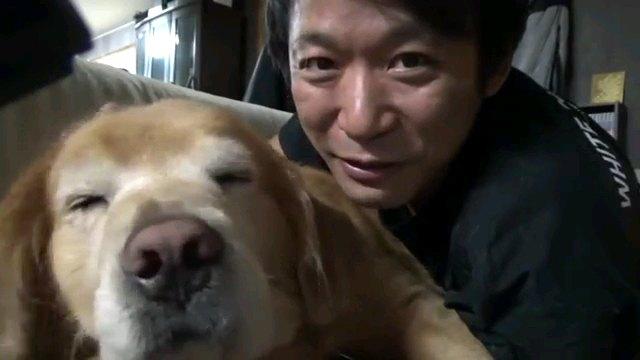 正面をむく人と犬