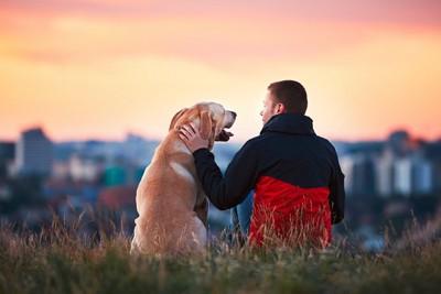 飼い主と座ってる犬の写真
