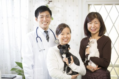 獣医師と飼い主と犬