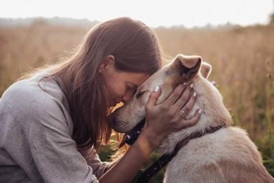 額をつける犬と女性