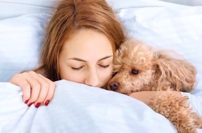 犬と女性とベッド