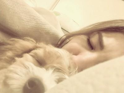 一緒に寝る愛犬