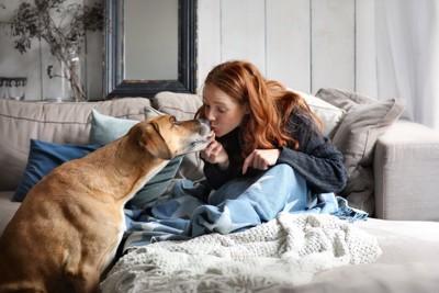 女性とキスをする大型犬