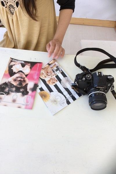 白い机 犬の写真冊子とカメラアップ