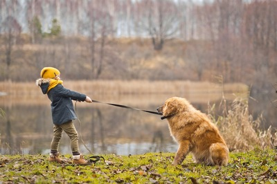座る犬とリードを引っ張る女の子