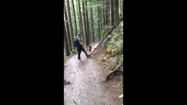 木に足を掛ける男性