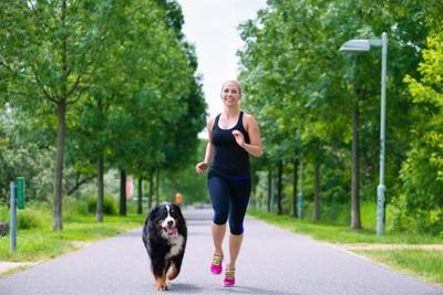 犬とランニングする女性