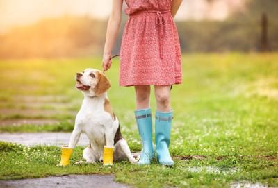 長靴をはいている犬と女性