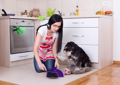 床を掃除する飼い主と犬