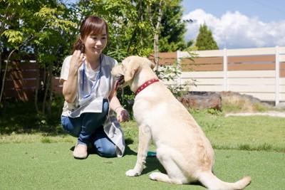 犬と一緒に遊ぶ女性