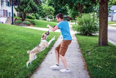 男性にむかってとぶ犬