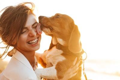 抱き抱えられて女性の顔を舐める犬