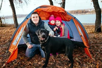犬とキャンプをする家族