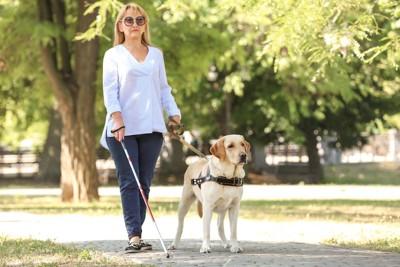 ガイド犬と歩く盲目の女性