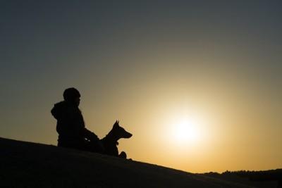 夕日の中で寄り添う人と犬のシルエット