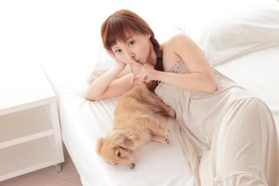 シーとする女性と横たわる犬