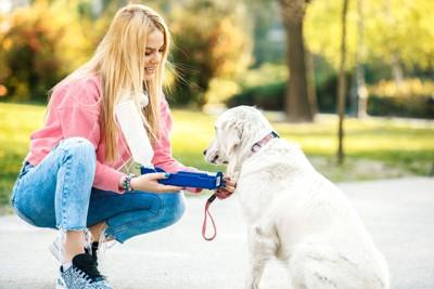 散歩先で女性に水をもらっている犬