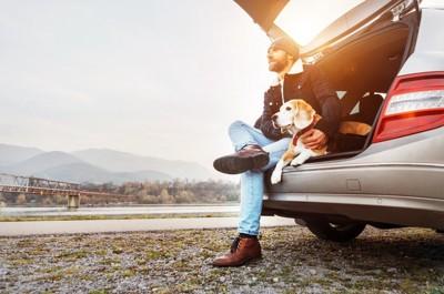 車のトランクで飼い主の横に座って外を眺めている犬