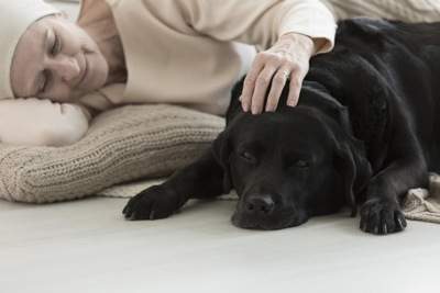 病気の女性と犬