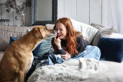 仲良くじゃれ合う女性と犬