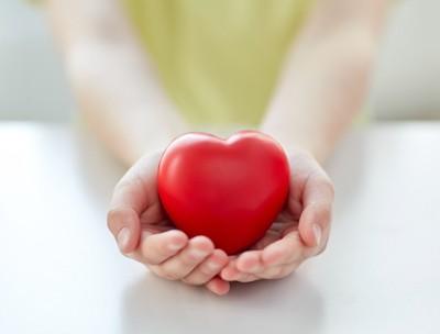 心臓を守る人の手 83127833