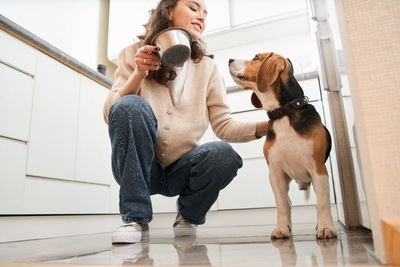 キッチンで愛犬を撫でる女性