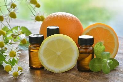 柑橘系の果物とアロマオイルの入った小瓶