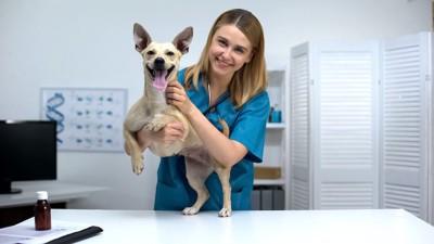 獣医さんに抱かれて笑顔の犬