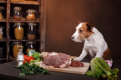 肉を前にした犬