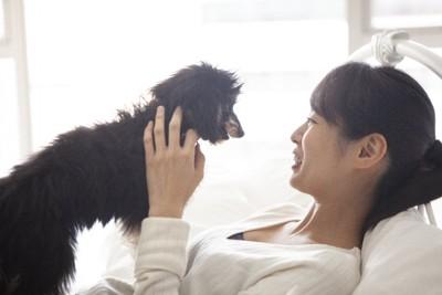 ベッドの上でじゃれ合う女性と犬