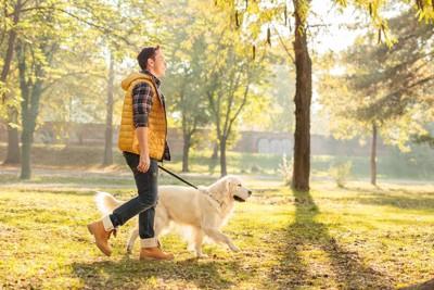 爽やかに散歩をする人と犬