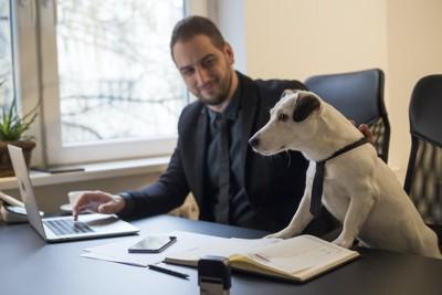男性の横でパソコンを覗き込む犬