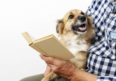 本を読む男性と犬