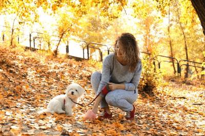 散歩中に犬のウンチを拾う女性