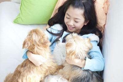 ベッドで横になる女の子に近寄る二匹の犬