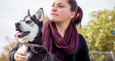 ハスキー犬と女性