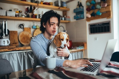 飼い主さんと一緒にパソコンを見る犬