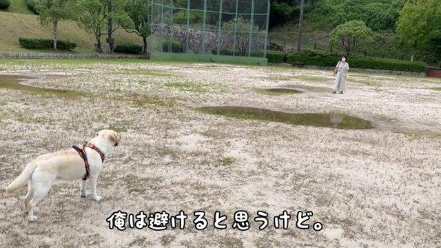 俺は~字幕