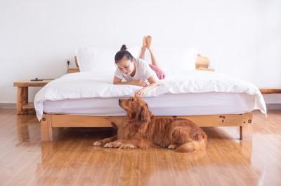 ベッドでくつろぐ女性とベッドの下で休むゴールデンレトリバー