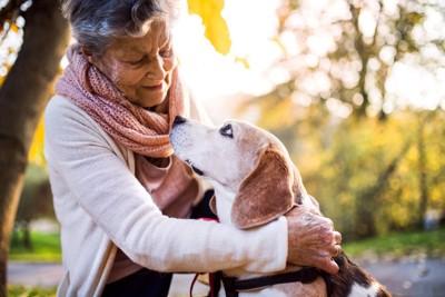 犬とアイコンタクトをとる女性